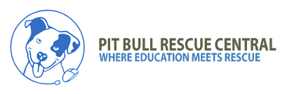 Pit Bull Rescue Central